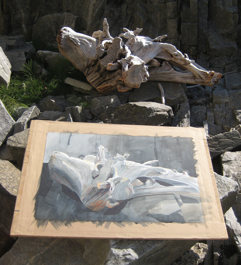 Mullardoch driftwood painting by Tristram Woolston - painted on location in the Highlands of Scotland