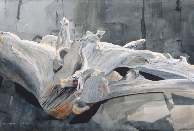 TW-013-2012