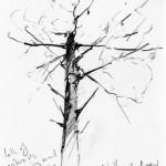 shattered tree v2